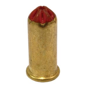 P22LRSC